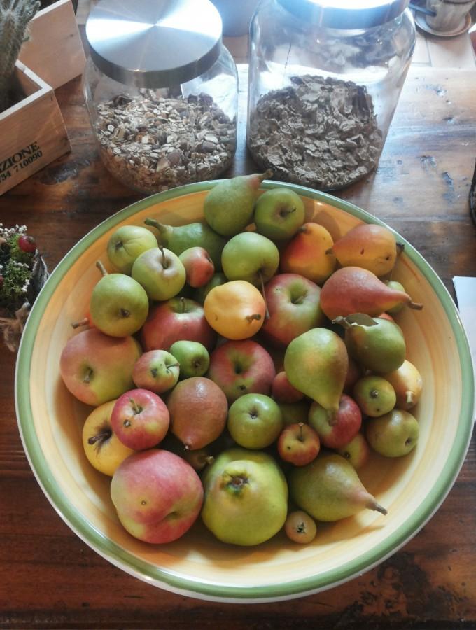 Viaggio nelle terre marchigiane – Agriturismo Agra Mater